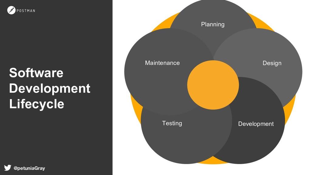 @petuniaGray Software Development Lifecycle Pla...