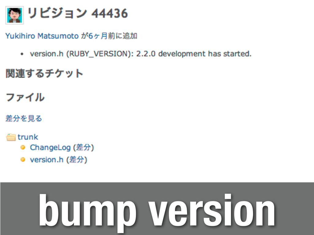 bump version