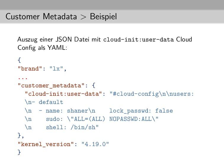 Customer Metadata > Beispiel Auszug einer JSON ...