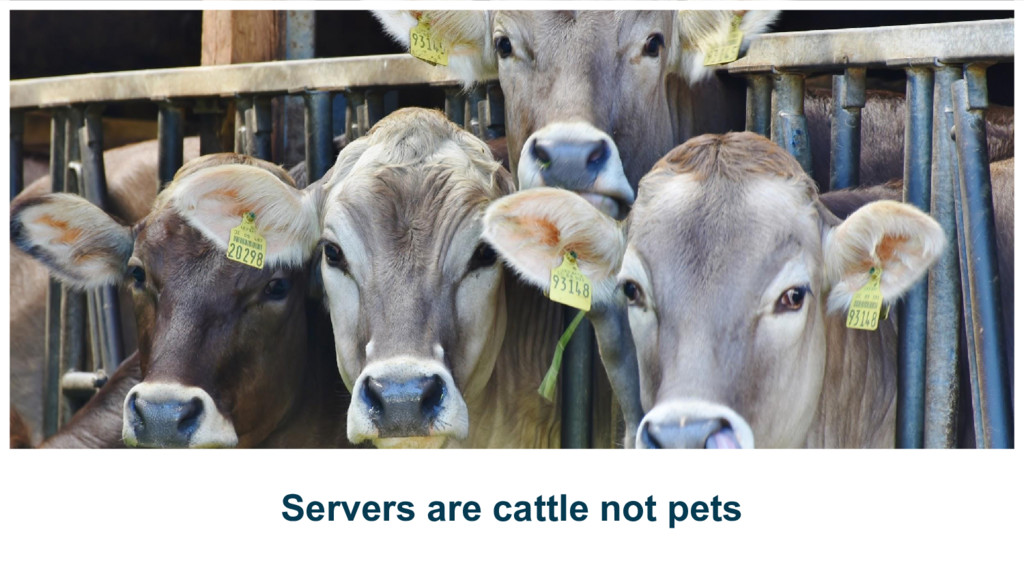 Servers are cattle not pets