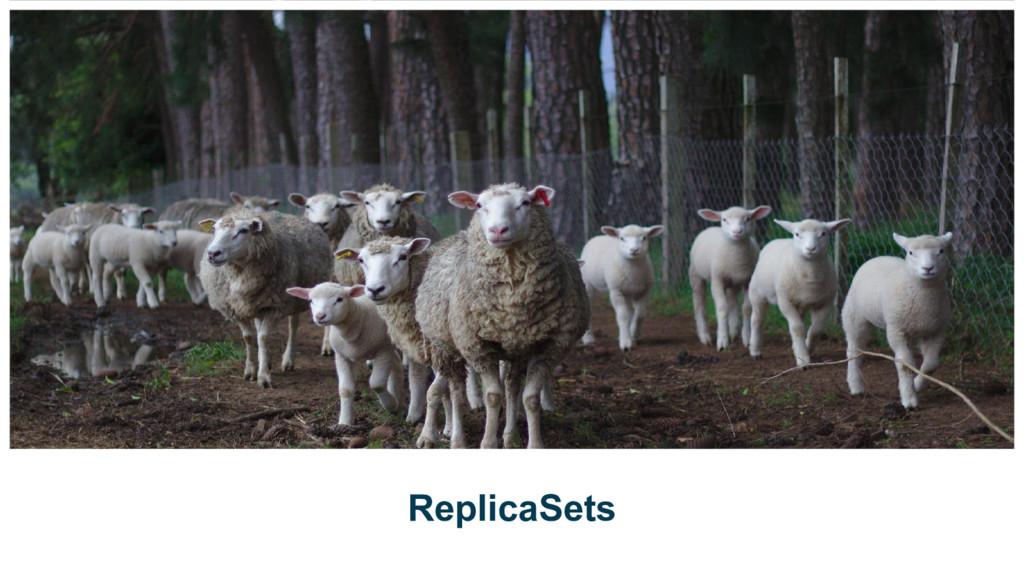 ReplicaSets