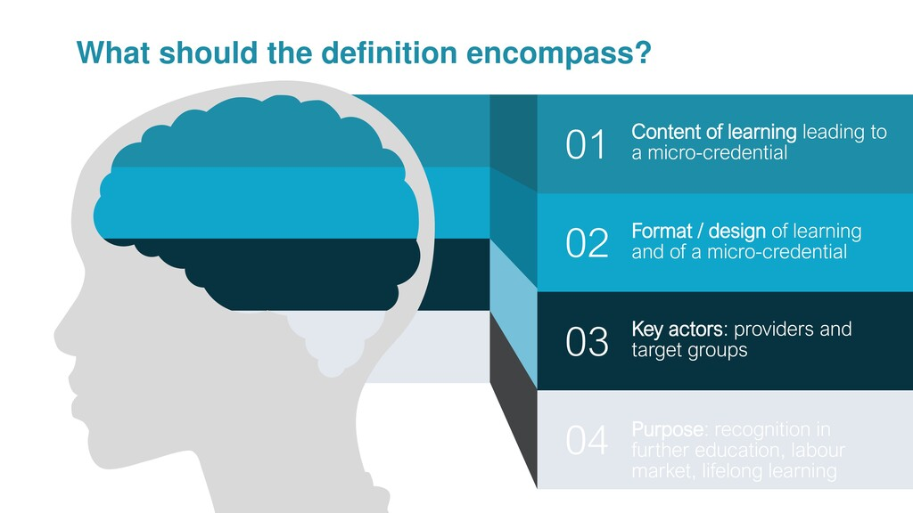 What should the definition encompass? 02 01 03 ...