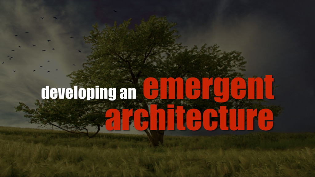 emergent architecture developing an