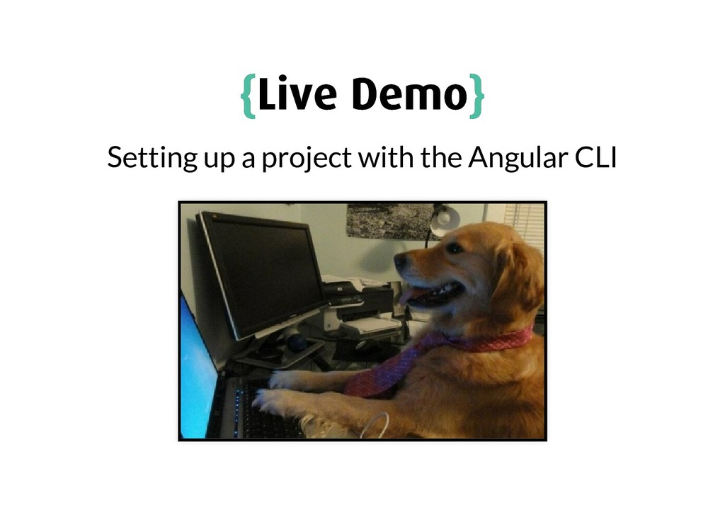 { {Live Demo Live Demo} } Setting up a project ...