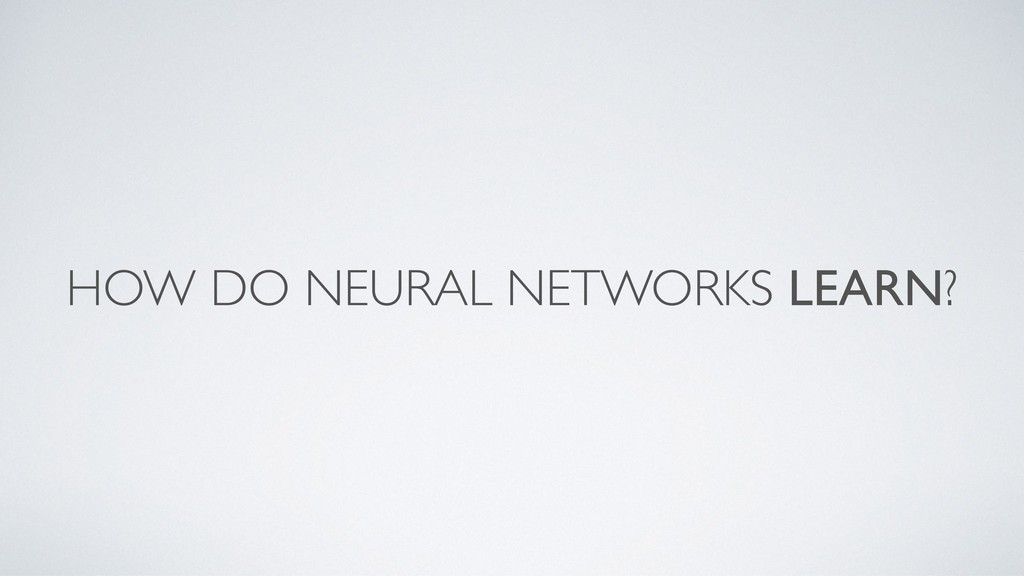 HOW DO NEURAL NETWORKS LEARN?