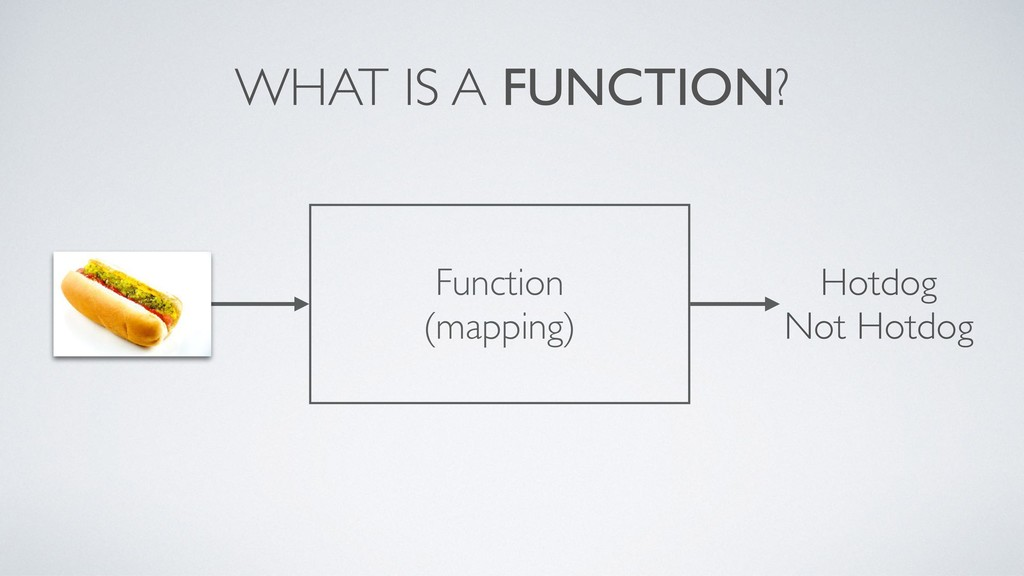 WHAT IS A FUNCTION? Hotdog Not Hotdog Function ...