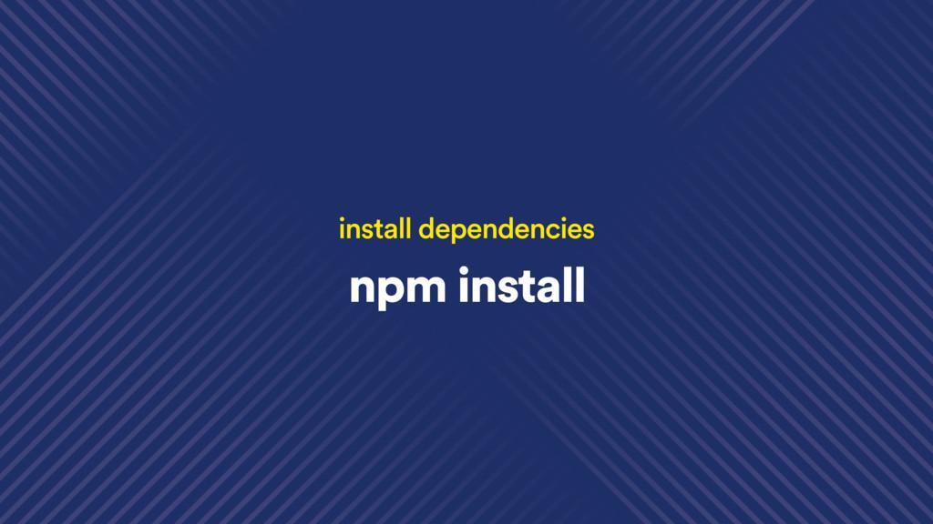 npm install install dependencies