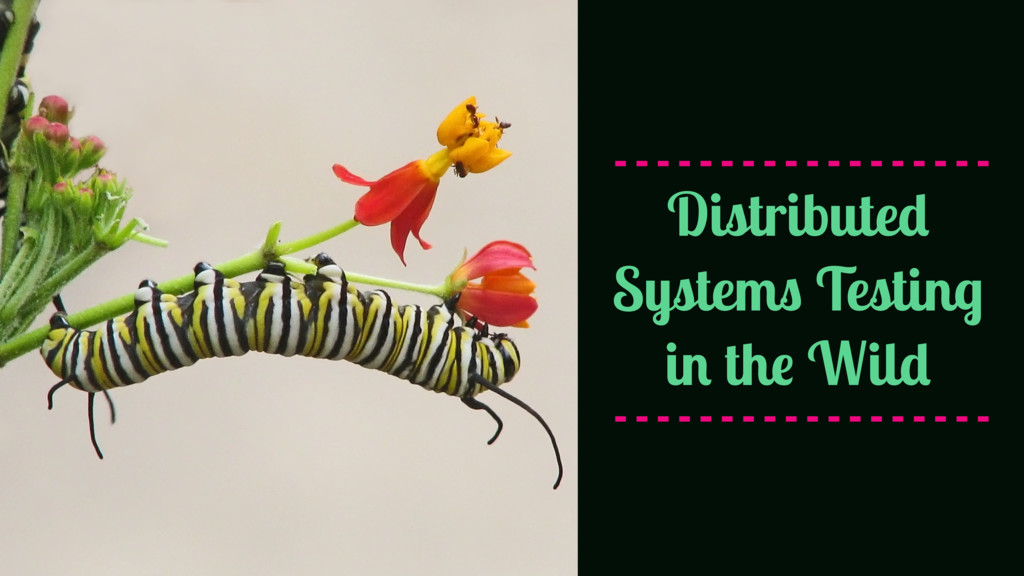 Distributed Systems Testing in the Wild