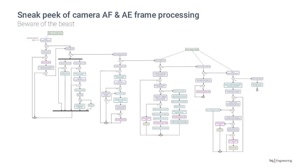 Sneak peek of camera AF & AE frame processing B...