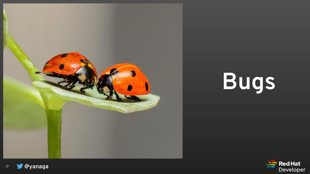 @yanaga 17 Bugs