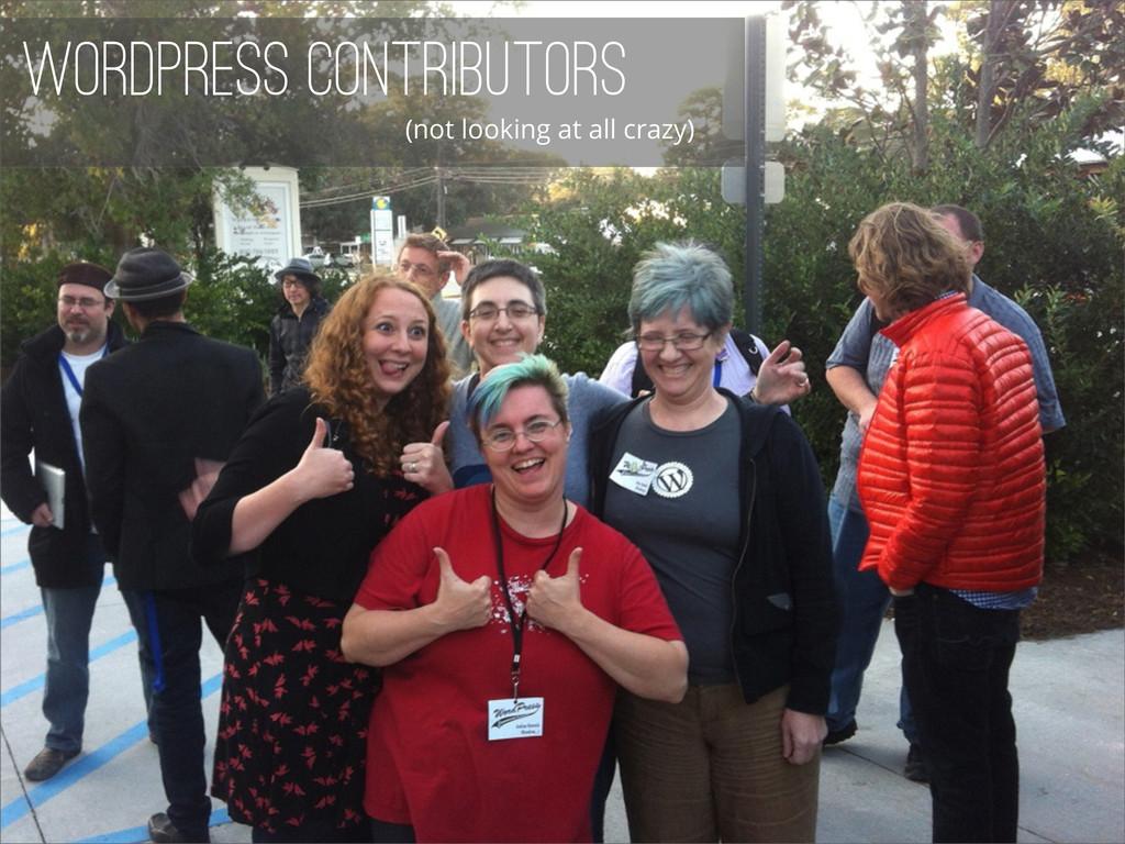 WordPress Contributors (not looking at all craz...