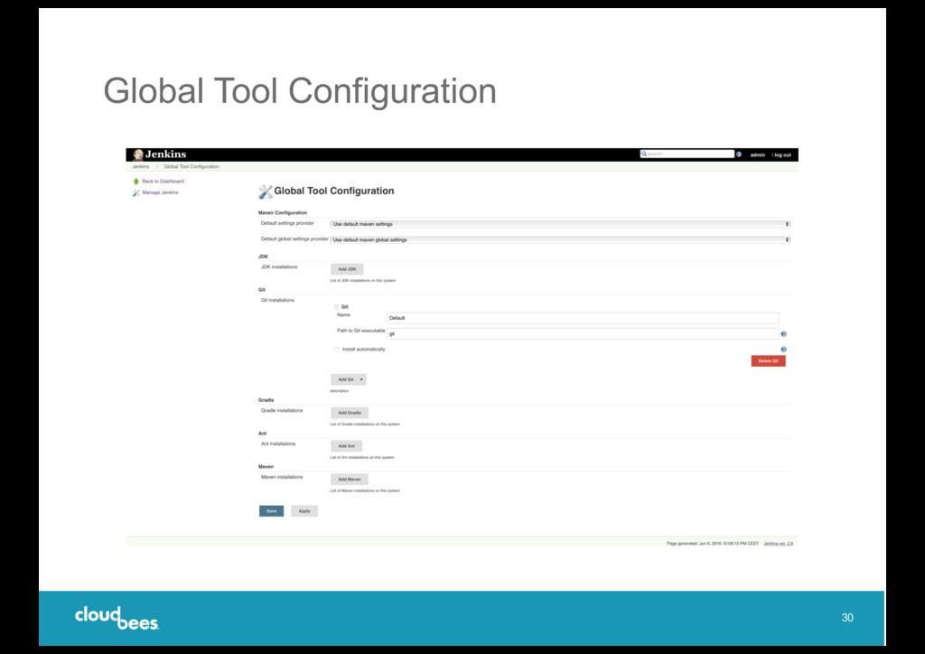 Global Tool Configuration 30