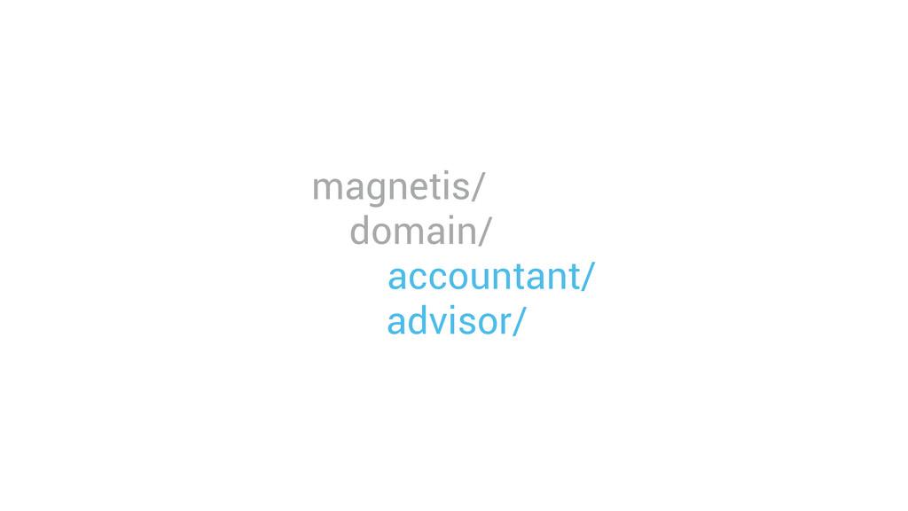 magnetis/ domain/ accountant/ advisor/