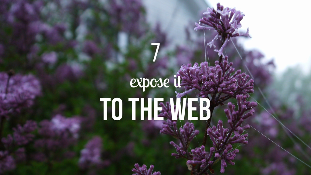 expose it to the web 7