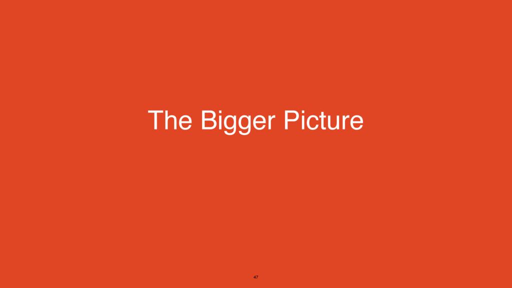 The Bigger Picture 47