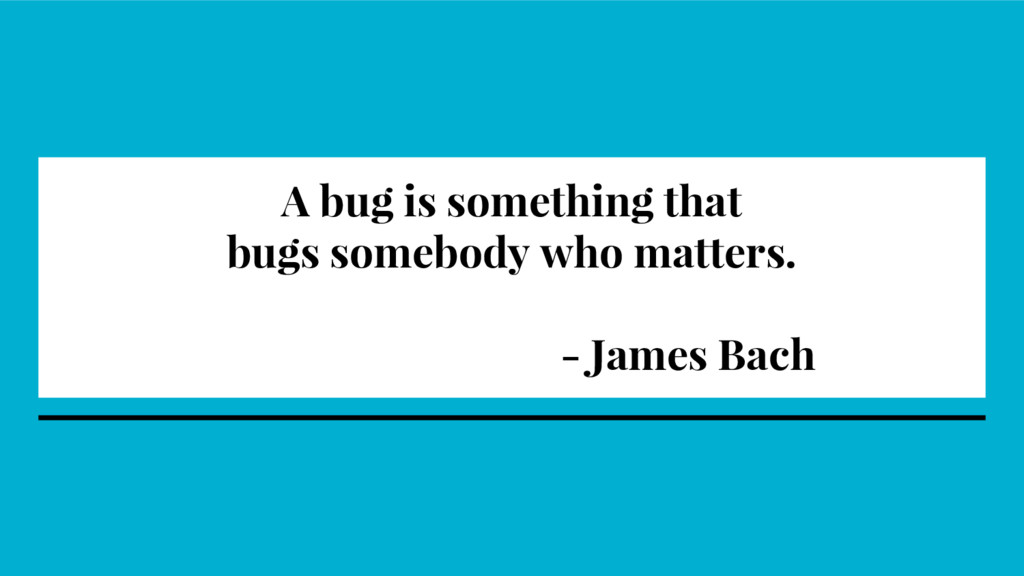 A bug is something that bugs somebody who matte...