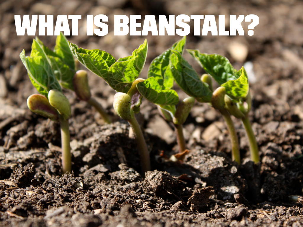 What is Beanstalk?