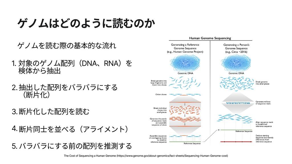 ゲノムはどのように読むのか ゲノムを読む際の基本的な流れ 1. 対象のゲノム配列(DNA、RN...