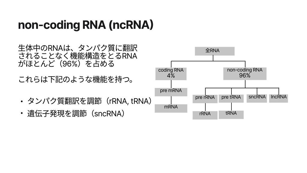 non-coding RNA (ncRNA) 生体中のRNAは、タンパク質に翻訳 されることな...