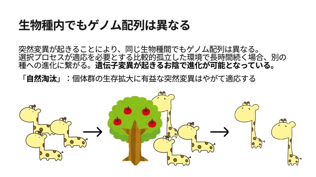 生物種内でもゲノム配列は異なる 突然変異が起きることにより、同じ生物種間でもゲノム配列は異なる...