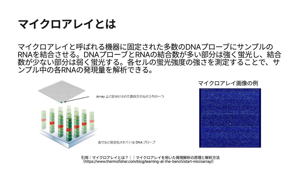 マイクロアレイ画像の例 マイクロアレイとは マイクロアレイと呼ばれる機器に固定された多数のDN...