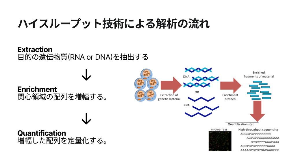 ハイスループット技術による解析の流れ Extraction 目的の遺伝物質(RNA or D...