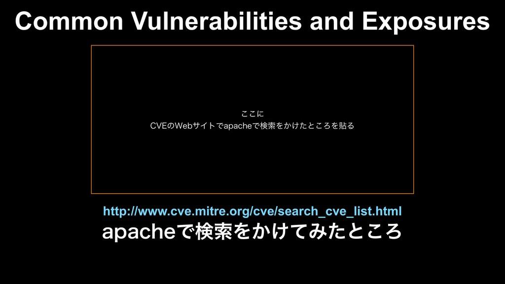 Common Vulnerabilities and Exposures BQBDIFͰݕࡧΛ...