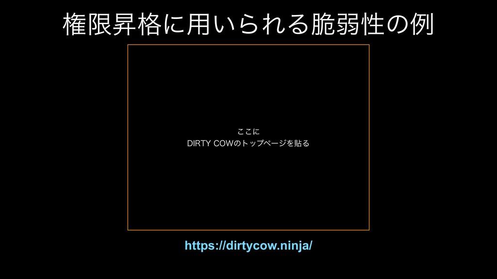 ݖݶঢ֨ʹ༻͍ΒΕΔ੬ऑੑͷྫ https://dirtycow.ninja/ ͜͜ʹ %*...