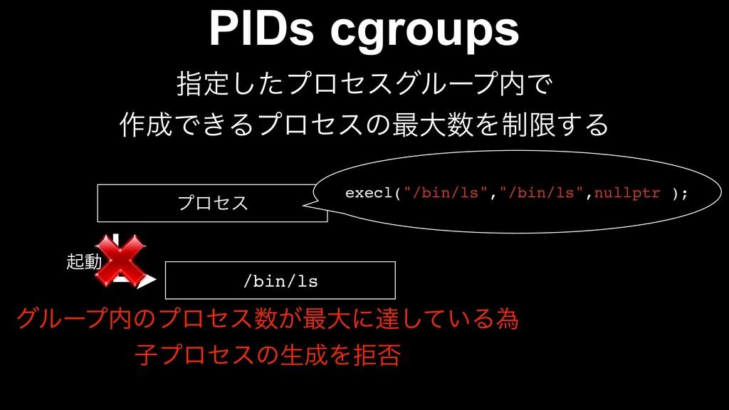 PIDs cgroups ࢦఆͨ͠ϓϩηεάϧʔϓͰ ࡞Ͱ͖Δϓϩηεͷ࠷େΛ੍ݶ͢Δ ...