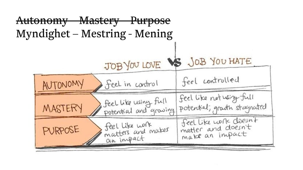 Autonomy – Mastery – Purpose Myndighet – Mestri...