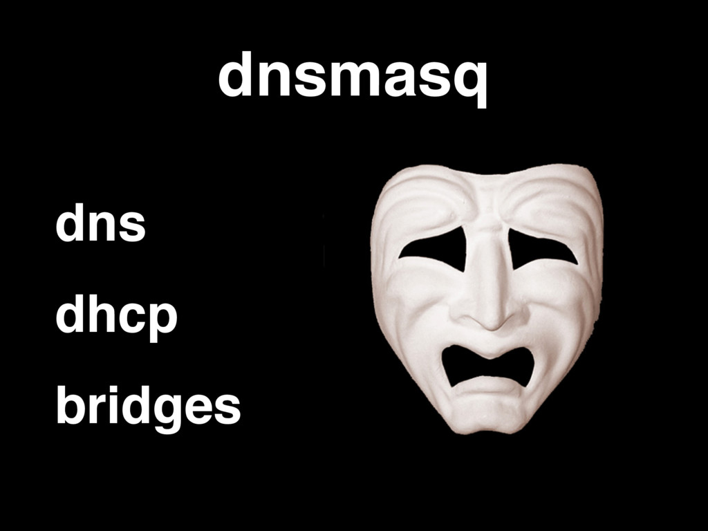 dnsmasq dns dhcp bridges