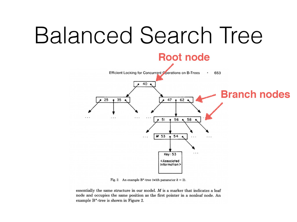 Balanced Search Tree Root node Branch nodes