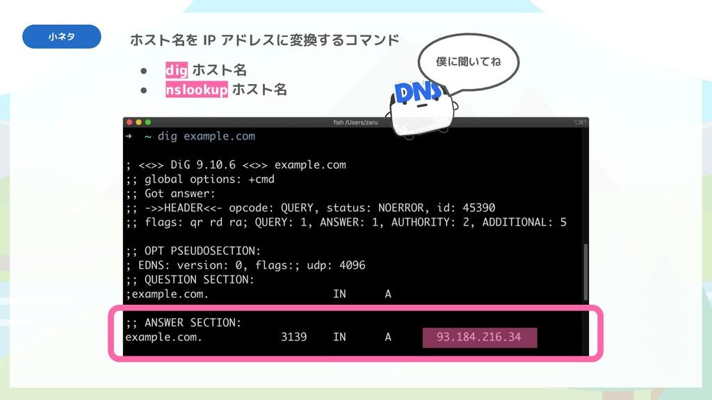 ● dig ホスト名 ● nslookup ホスト名 ホスト名を IP アドレスに変換するコマ...