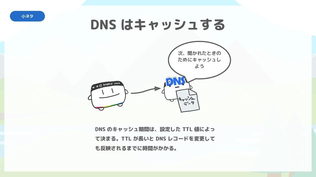 DNS はキャッシュする 次、聞かれたときの ためにキャッシュし よう DNS のキャッシュ期...