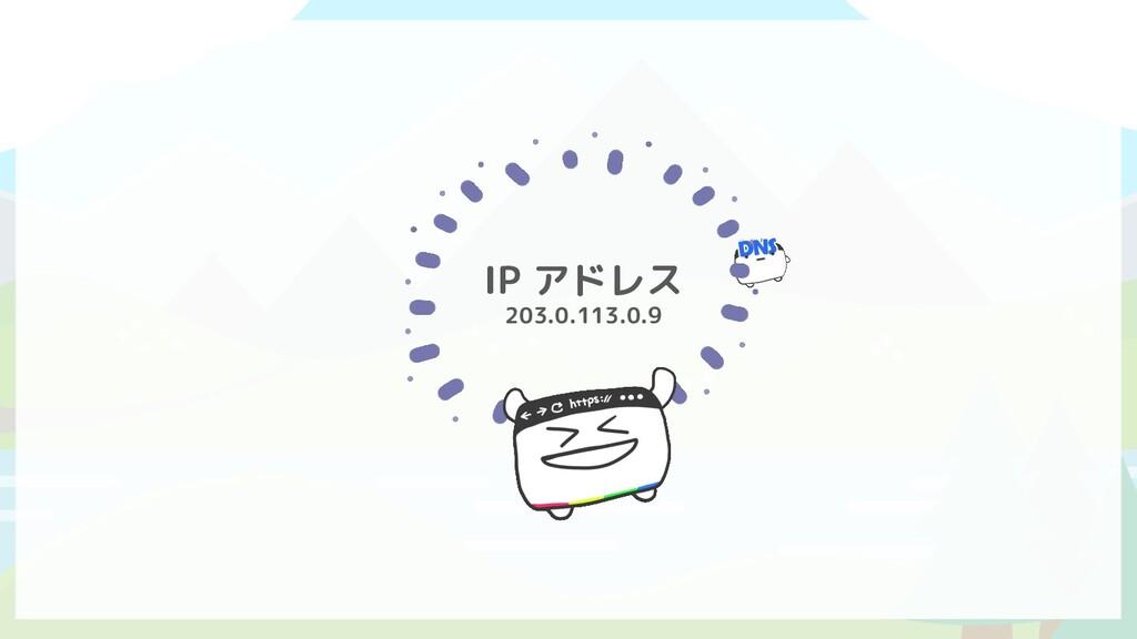 IP アドレス 203.0.113.0.9