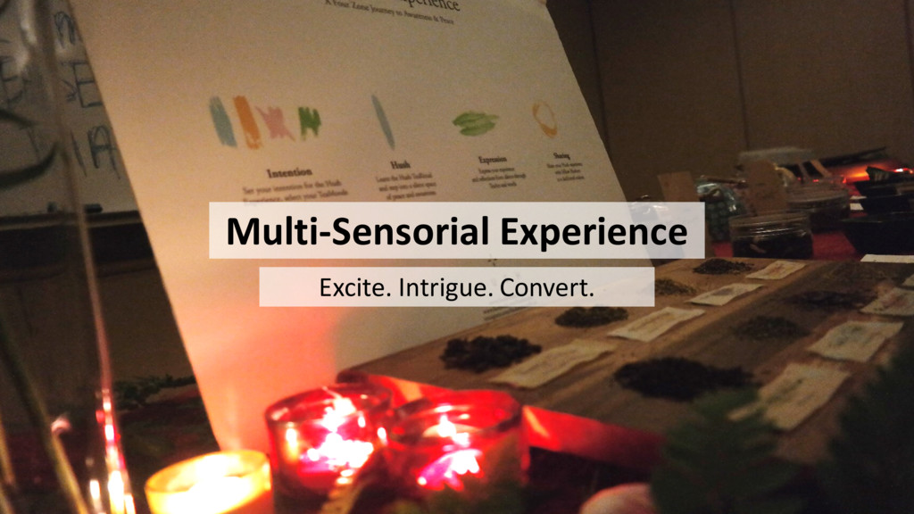 Multi-Sensorial Experience Excite. Intrigue. Co...