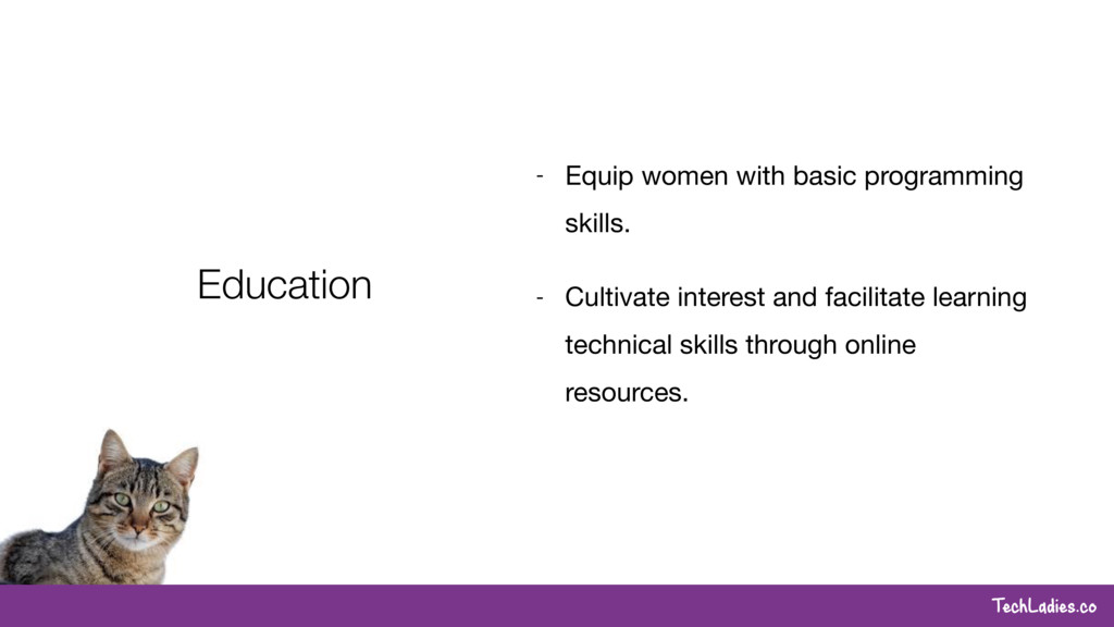 TechLadies.co Education - Equip women with basi...