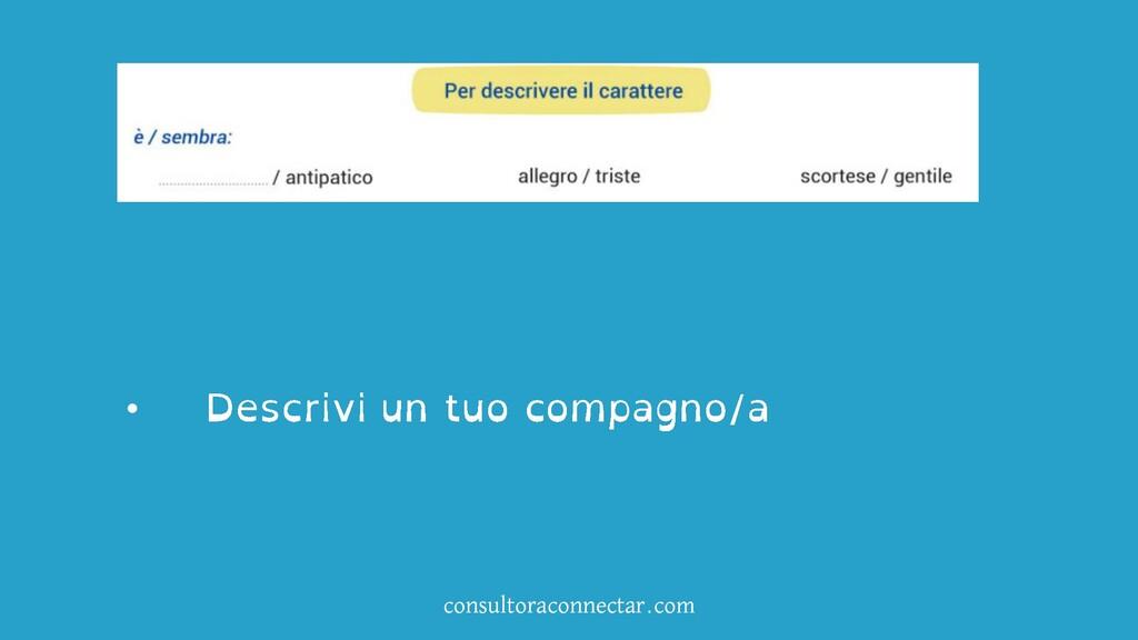 consultoraconnectar.com •