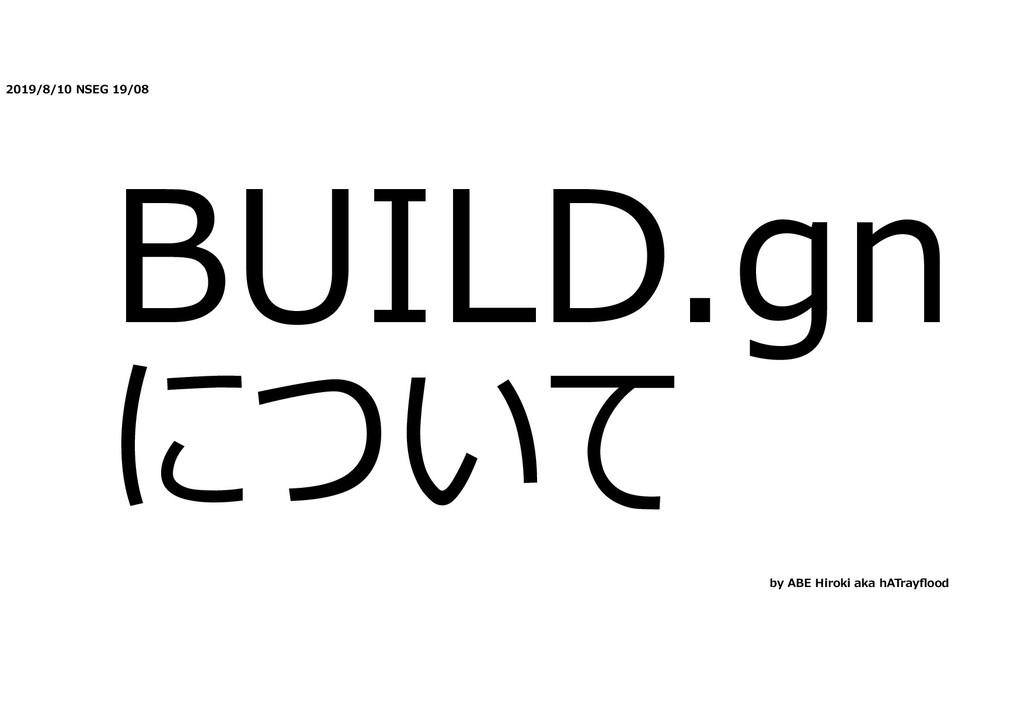 2019/8/10 NSEG 19/08 BUILD.gn について by ABE Hirok...