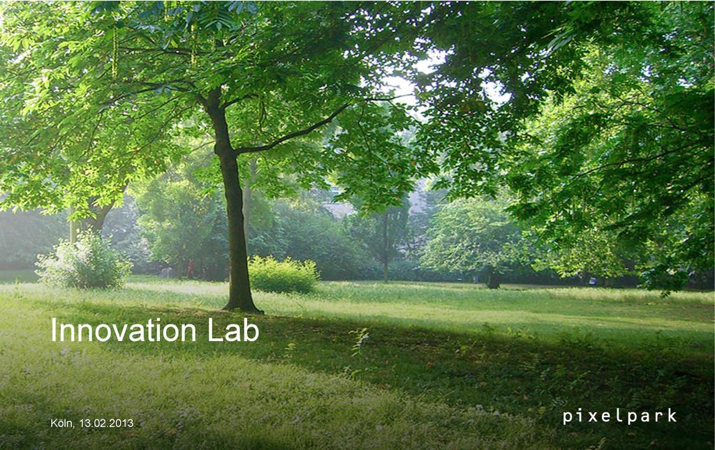 Innovation Lab Köln, 13.02.2013