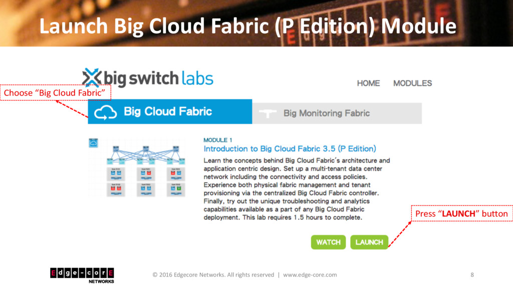 Launch Big Cloud Fabric (P Edition) Module 8 © ...