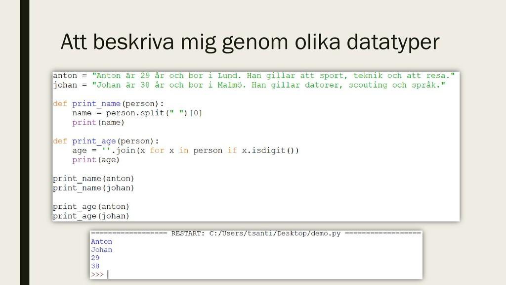 Att beskriva mig genom olika datatyper
