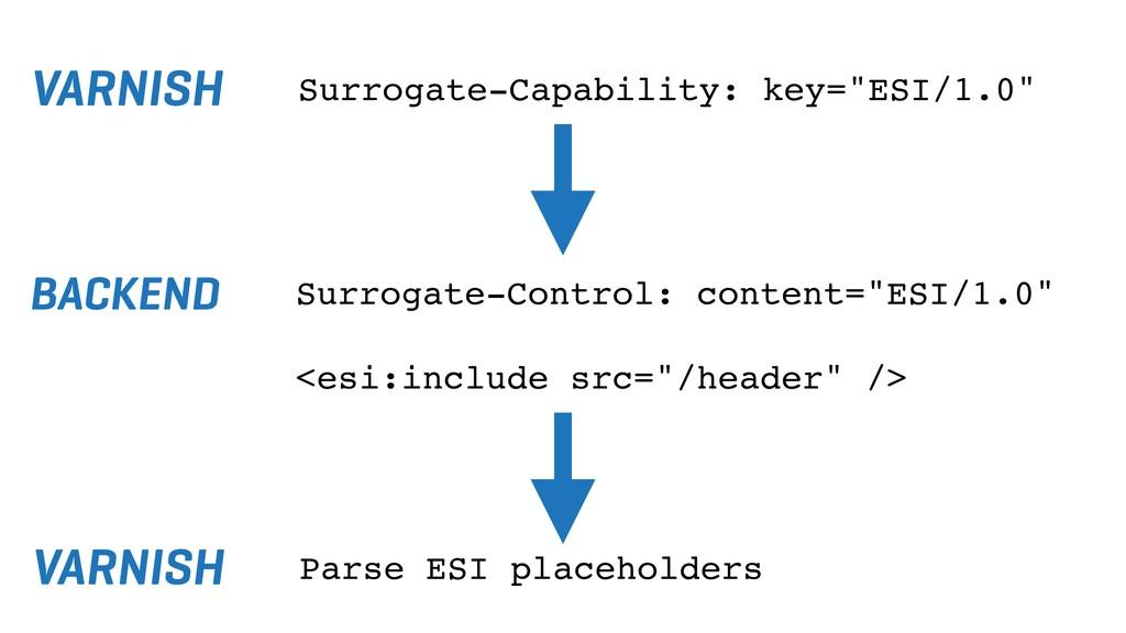 "VARNISH Surrogate-Capability: key=""ESI/1.0"" Sur..."