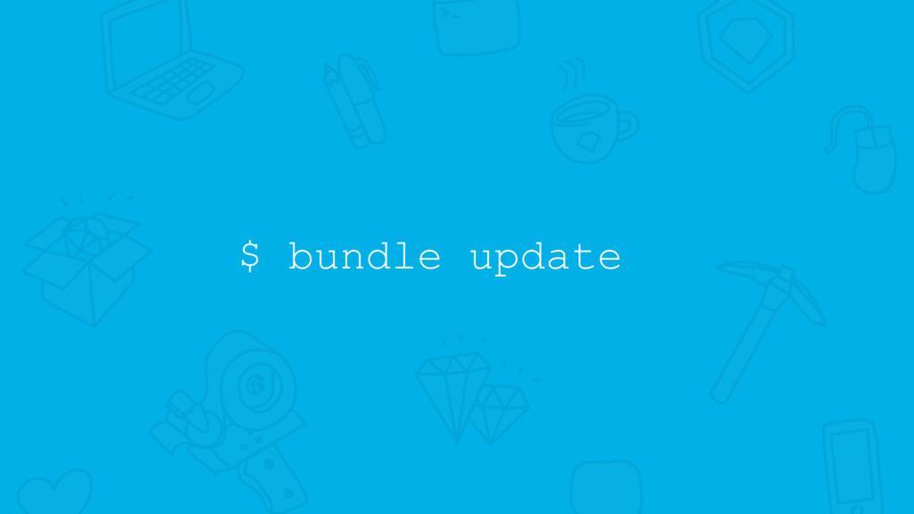 $ bundle update