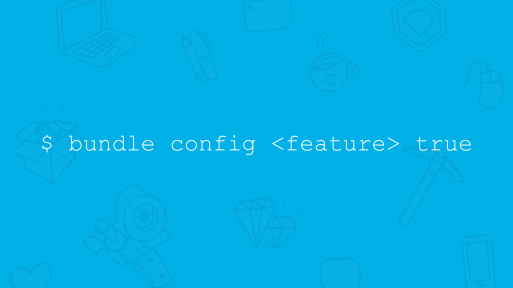 $ bundle config <feature> true