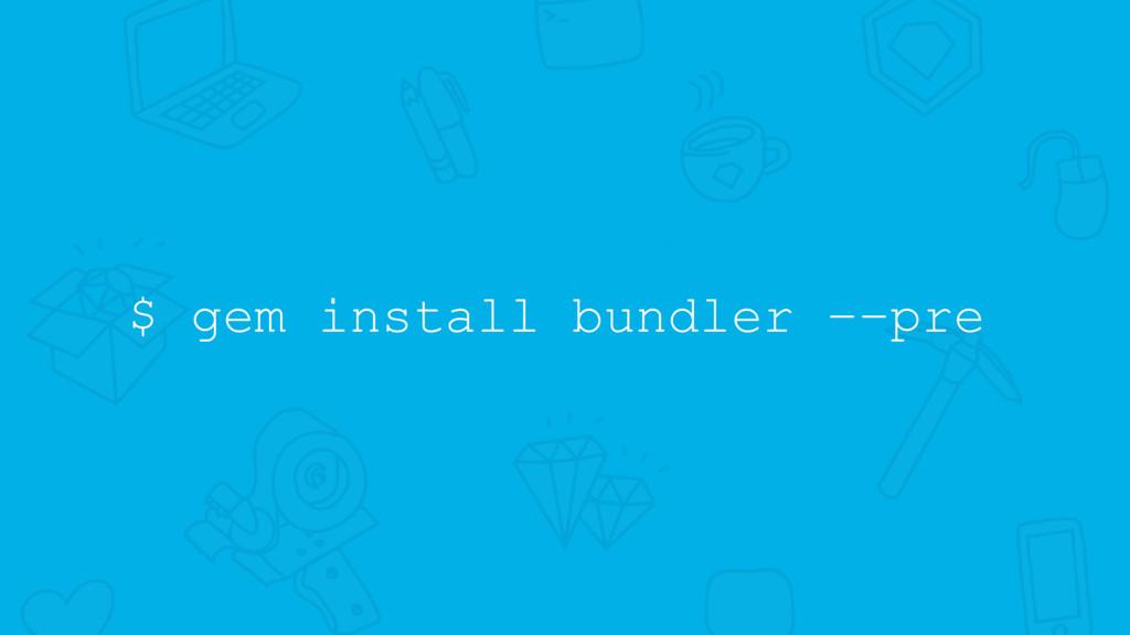 $ gem install bundler ––pre