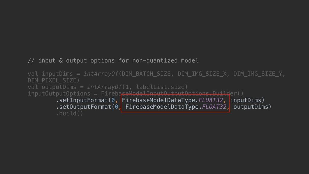 // input & output options for non-quantized mod...