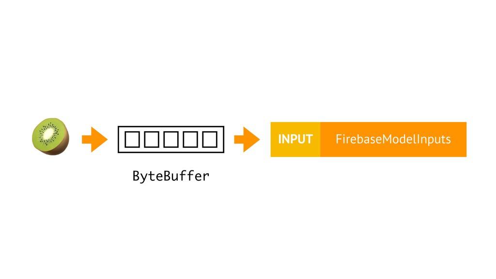 ByteBuffer FirebaseModelInputs INPUT