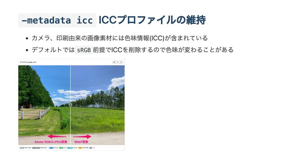 -metadata icc RGB