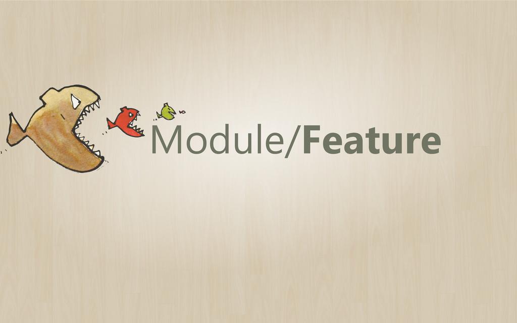 Module/Feature